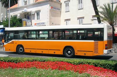 Deset novih klimatiziranih autobusa